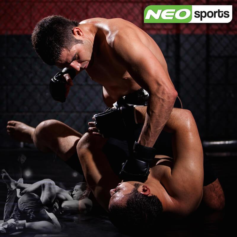 NEO Mixed martial Arts