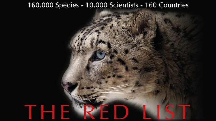 the red list 28 august 2018