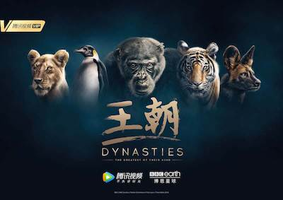 BBCDynastiesTencent 16Oct2018 Chinese Poster 16 Oct 2018